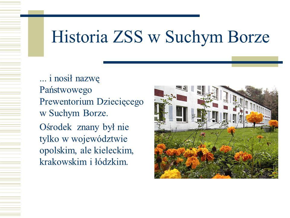 Historia ZSS w Suchym Borze Zakład podlegał Dyrekcji Huty Batory.