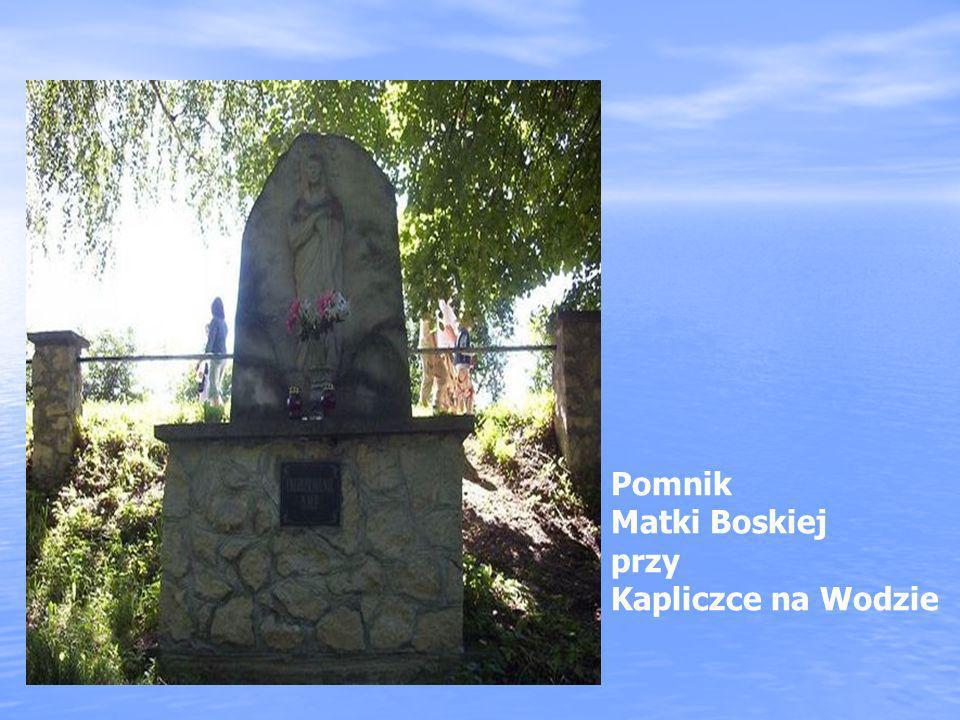 Pomnik Matki Boskiej przy Kapliczce na Wodzie