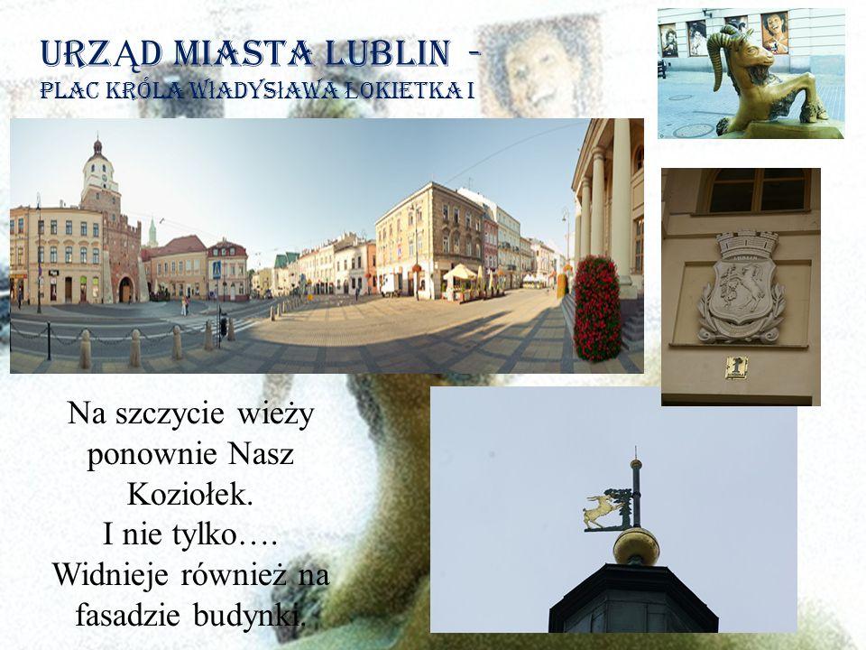 Urz Ą d Miasta Lublin - plac króla w ł adys ł awa Ł okietka i Na szczycie wieży ponownie Nasz Koziołek.