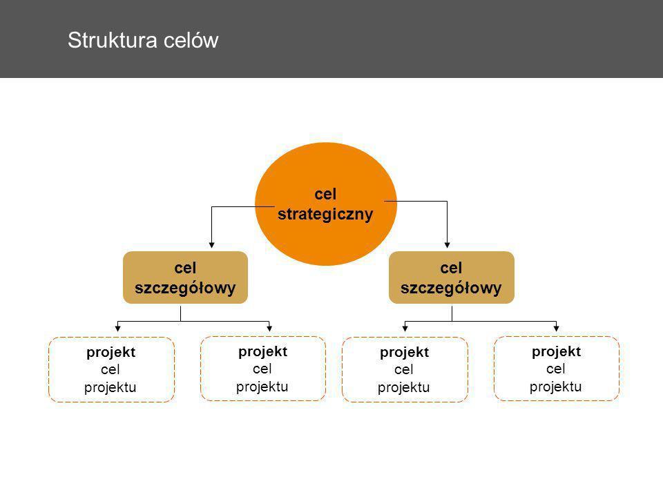 Struktura celów cel strategiczny projekt cel projektu cel szczegółowy projekt cel projektu projekt cel projektu projekt cel projektu