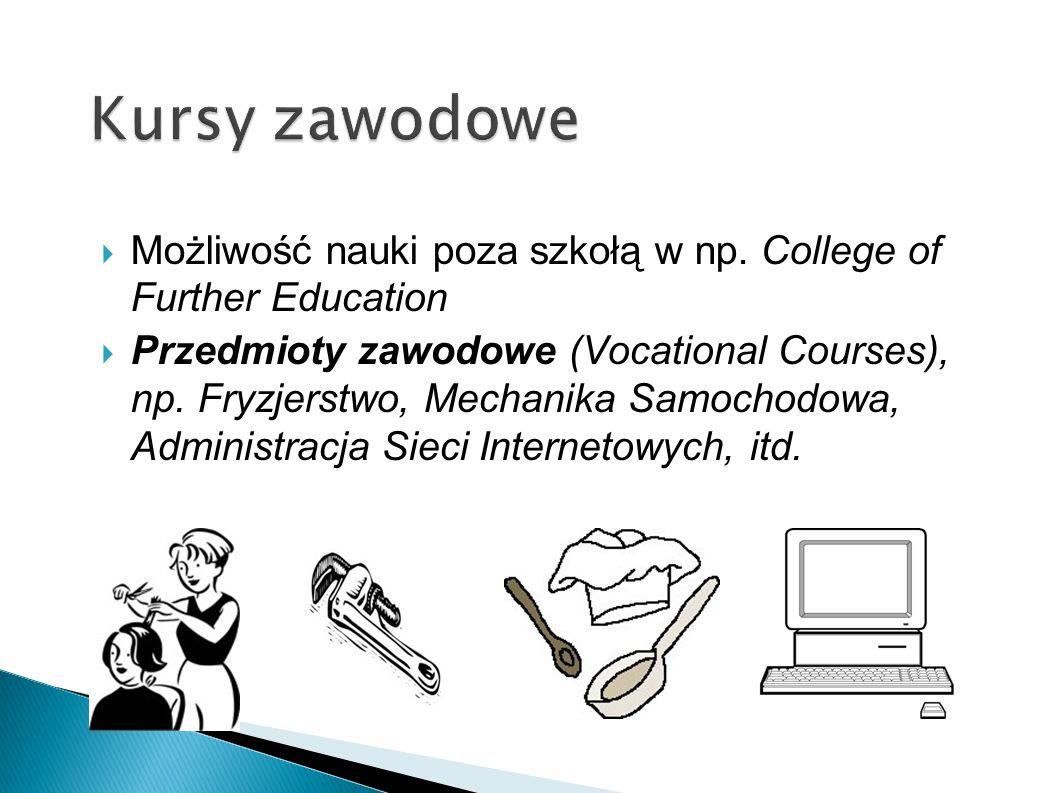 Możliwość nauki poza szkołą w np. College of Further Education Przedmioty zawodowe (Vocational Courses), np. Fryzjerstwo, Mechanika Samochodowa, Admin