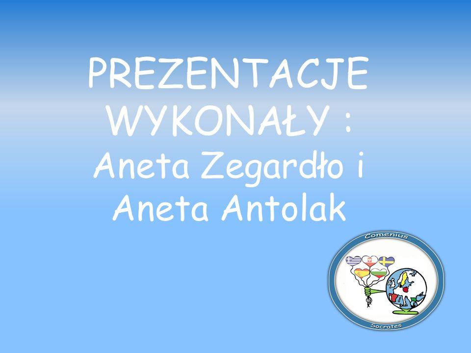 PREZENTACJE WYKONAŁY : Aneta Zegardło i Aneta Antolak