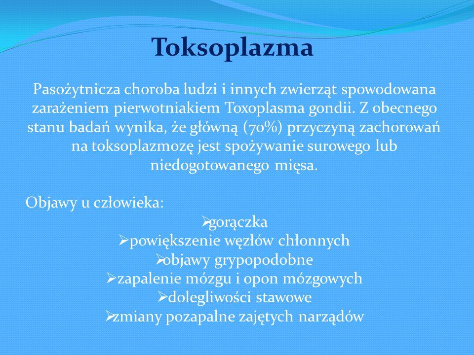 Pasożytnicza choroba ludzi i innych zwierząt spowodowana zarażeniem pierwotniakiem Toxoplasma gondii. Z obecnego stanu badań wynika, że główną (70%) p