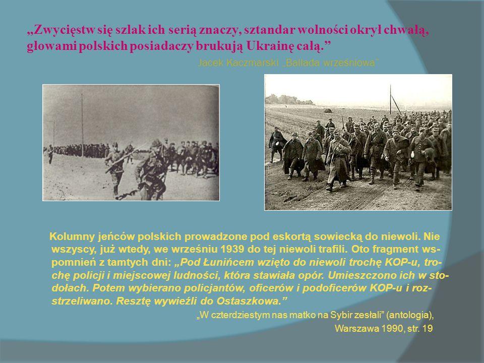 Zwycięstw się szlak ich serią znaczy, sztandar wolności okrył chwałą, głowami polskich posiadaczy brukują Ukrainę całą.