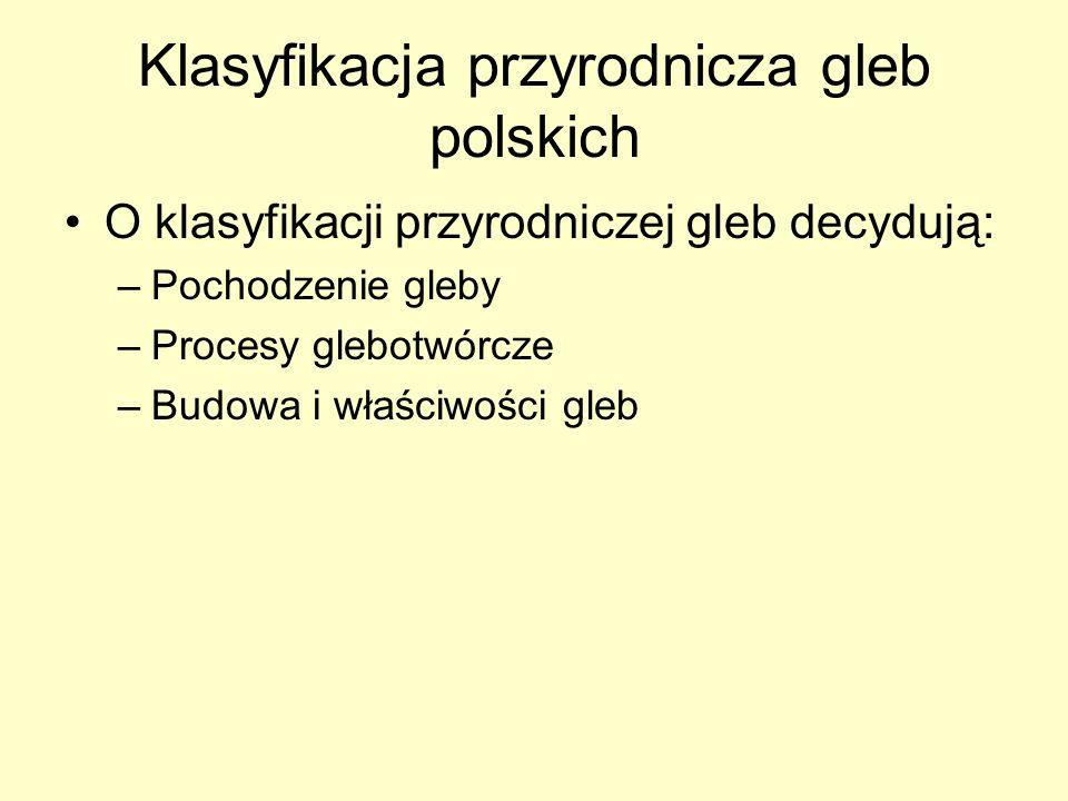 Klasyfikacja przyrodnicza gleb polskich O klasyfikacji przyrodniczej gleb decydują: –Pochodzenie gleby –Procesy glebotwórcze –Budowa i właściwości gle