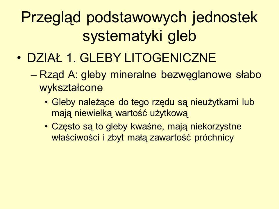 Przegląd podstawowych jednostek systematyki gleb DZIAŁ 1. GLEBY LITOGENICZNE –Rząd A: gleby mineralne bezwęglanowe słabo wykształcone Gleby należące d
