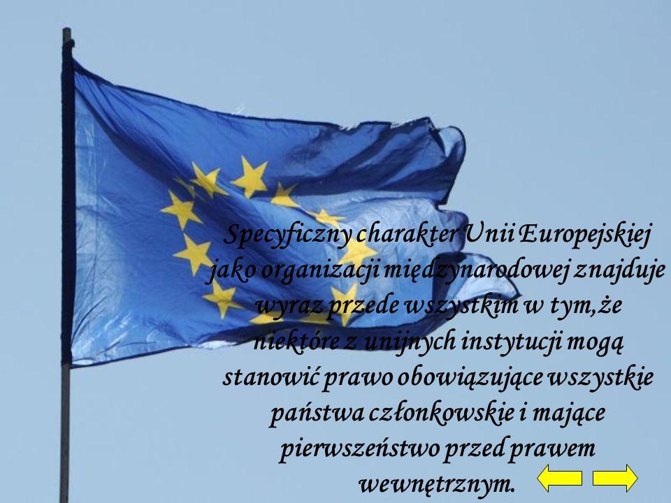 Specyficzny charakter Unii Europejskiej jako organizacji międzynarodowej znajduje wyraz przede wszystkim w tym,że niektóre z unijnych instytucji mogą