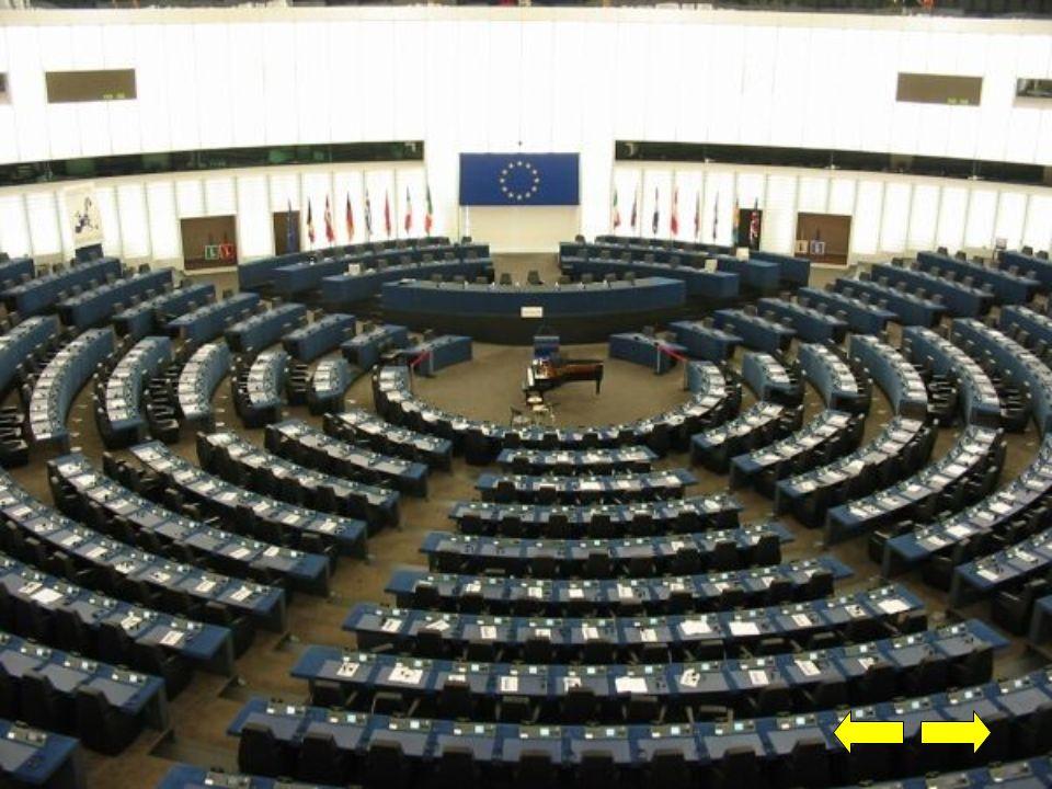 Ugrupowanie polityczne Parlamentu Europejskiego w kadencji 2009-2014: 1.