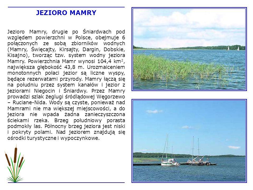 Jezioro Mamry, drugie po Śniardwach pod względem powierzchni w Polsce, obejmuje 6 połączonych ze sobą zbiorników wodnych (Mamry, Święcajty, Kirsajty,