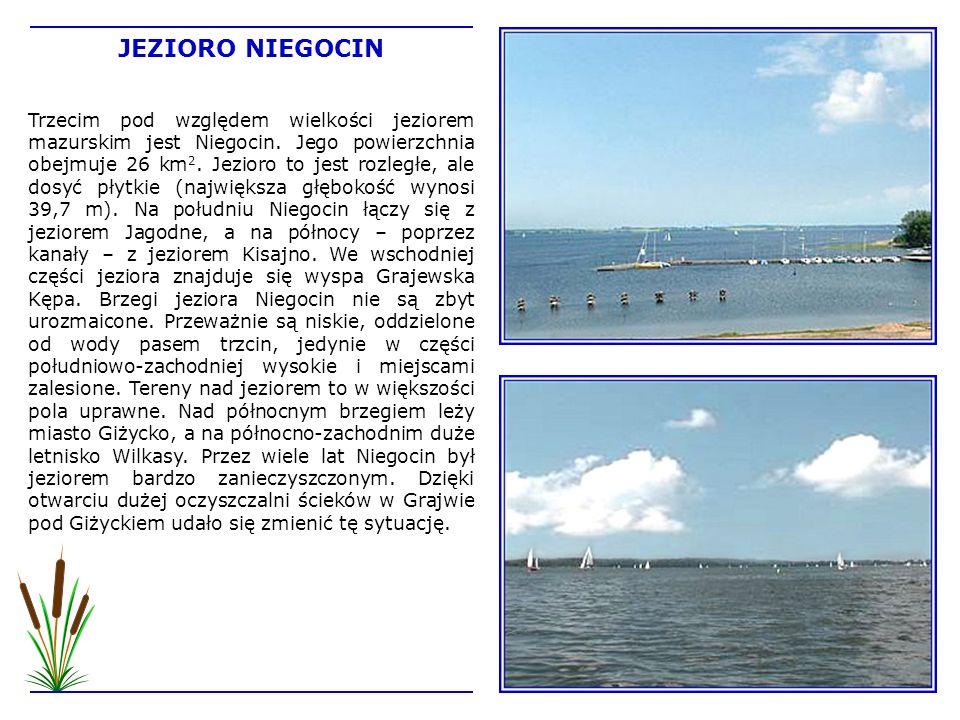 Trzecim pod względem wielkości jeziorem mazurskim jest Niegocin. Jego powierzchnia obejmuje 26 km 2. Jezioro to jest rozległe, ale dosyć płytkie (najw
