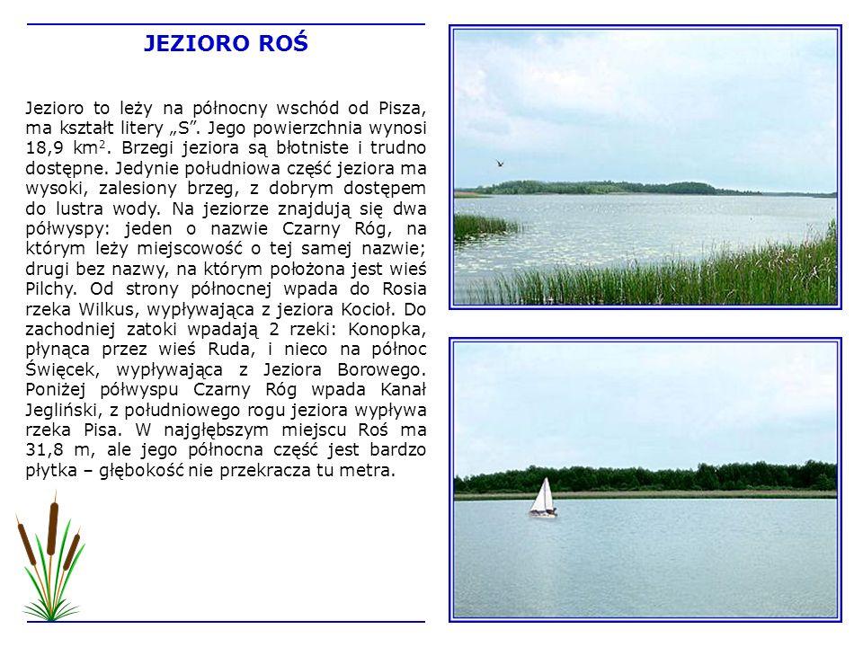 Jezioro to leży na północny wschód od Pisza, ma kształt litery S. Jego powierzchnia wynosi 18,9 km 2. Brzegi jeziora są błotniste i trudno dostępne. J
