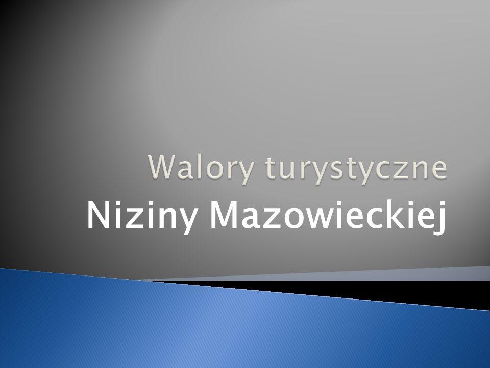 Niziny Mazowieckiej