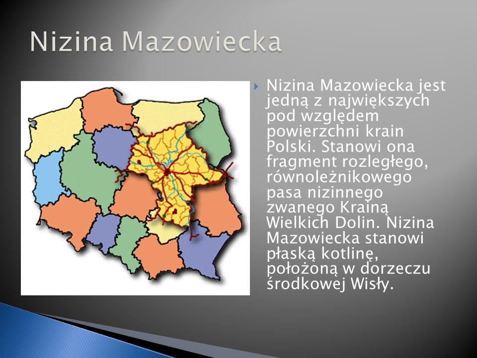 Nizina Mazowiecka jest jedną z największych pod względem powierzchni krain Polski.