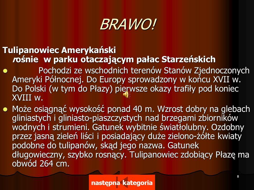 Dziękuję za uwagę Materiały zaczerpnięto z następujących stron internetowych: http://www.plaza.neostrada.pl/ http://pl.wikipedia.org/wiki/P%C5%82aza http://spplaza.edupage.org/ Koniec