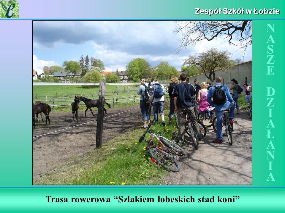 Wybrane działania w ramach zdobywania Zielonego Certyfikatu Zespół Szkół w Łobzie Trasa rowerowa Szlakiem łobeskich stad koni NASZE DZIAŁANIANASZE DZI