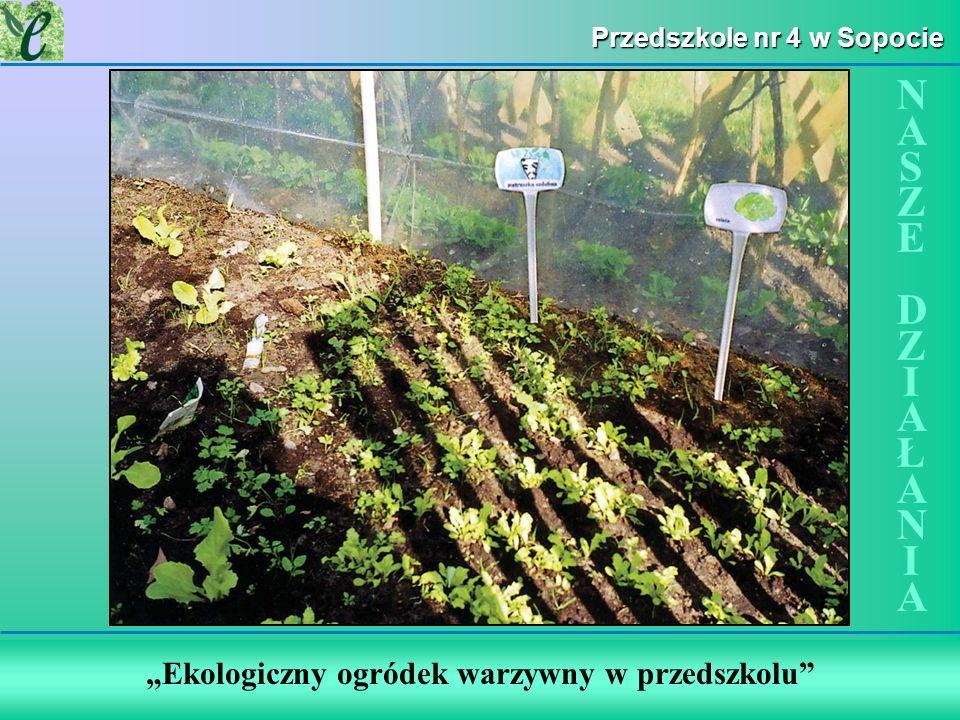 Wybrane działania w ramach zdobywania Zielonego Certyfikatu Ekologiczny ogródek warzywny w przedszkolu NASZE DZIAŁANIANASZE DZIAŁANIA Przedszkole nr 4