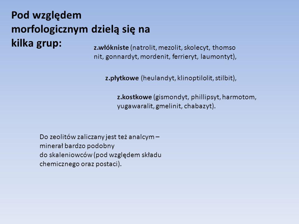 Pod względem morfologicznym dzielą się na kilka grup: z.włókniste (natrolit, mezolit, skolecyt, thomso nit, gonnardyt, mordenit, ferrieryt, laumontyt), z.płytkowe (heulandyt, klinoptilolit, stilbit), z.kostkowe (gismondyt, phillipsyt, harmotom, yugawaralit, gmelinit, chabazyt).