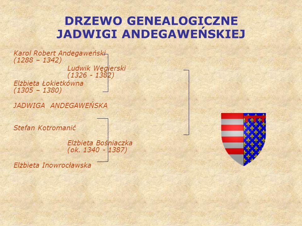 DRZEWO GENEALOGICZNE JADWIGI ANDEGAWEŃSKIEJ Karol Robert Andegaweński (1288 – 1342) Ludwik Węgierski (1326 - 1382) Elżbieta Łokietkówna (1305 – 1380) JADWIGA ANDEGAWEŃSKA Stefan Kotromanić Elżbieta Bośniaczka (ok.