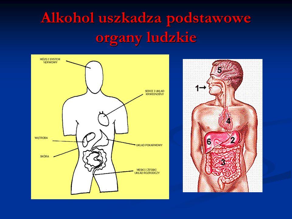 Dawki alkoholu i ich skutki Jednorazowa dawka trująca lub śmiertelna zależna jest od właściwości indywidualnych ustroju, przyzwyczajenia i rodzaju nap