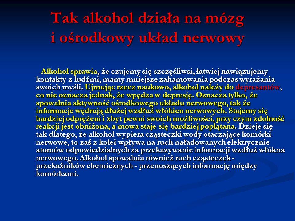 Alkohol uszkadza podstawowe organy ludzkie
