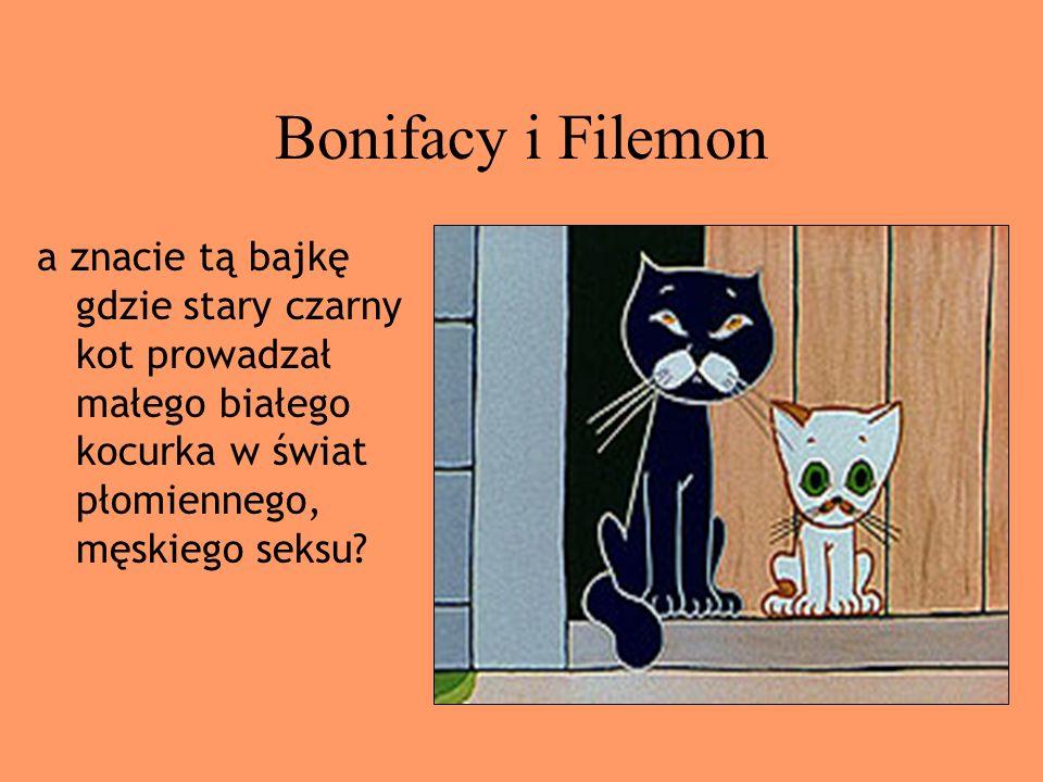 Bonifacy i Filemon a znacie tą bajkę gdzie stary czarny kot prowadzał małego białego kocurka w świat płomiennego, męskiego seksu?