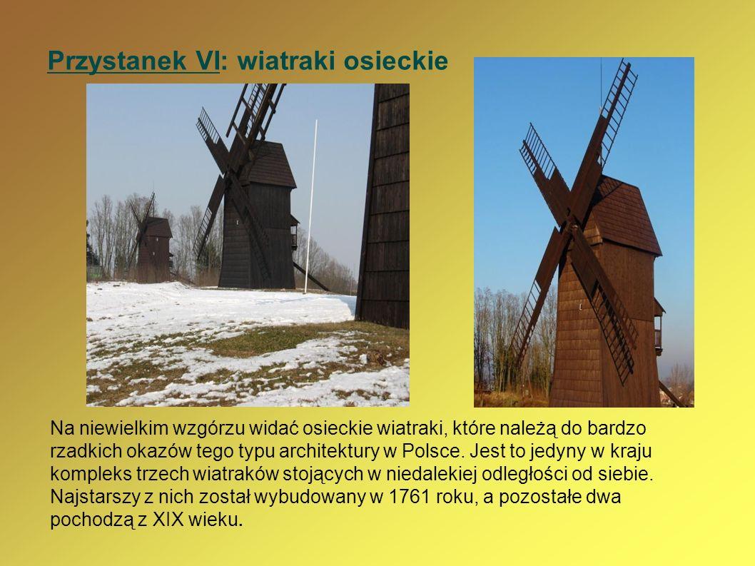 Przystanek VI: wiatraki osieckie Na niewielkim wzgórzu widać osieckie wiatraki, które należą do bardzo rzadkich okazów tego typu architektury w Polsce