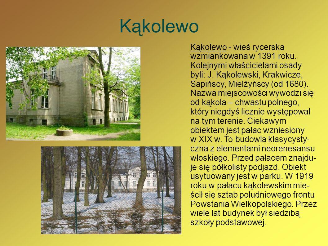 Kąkolewo Kąkolewo - wieś rycerska wzmiankowana w 1391 roku. Kolejnymi właścicielami osady byli: J. Kąkolewski, Krakwicze, Sapińscy, Mielżyńscy (od 168