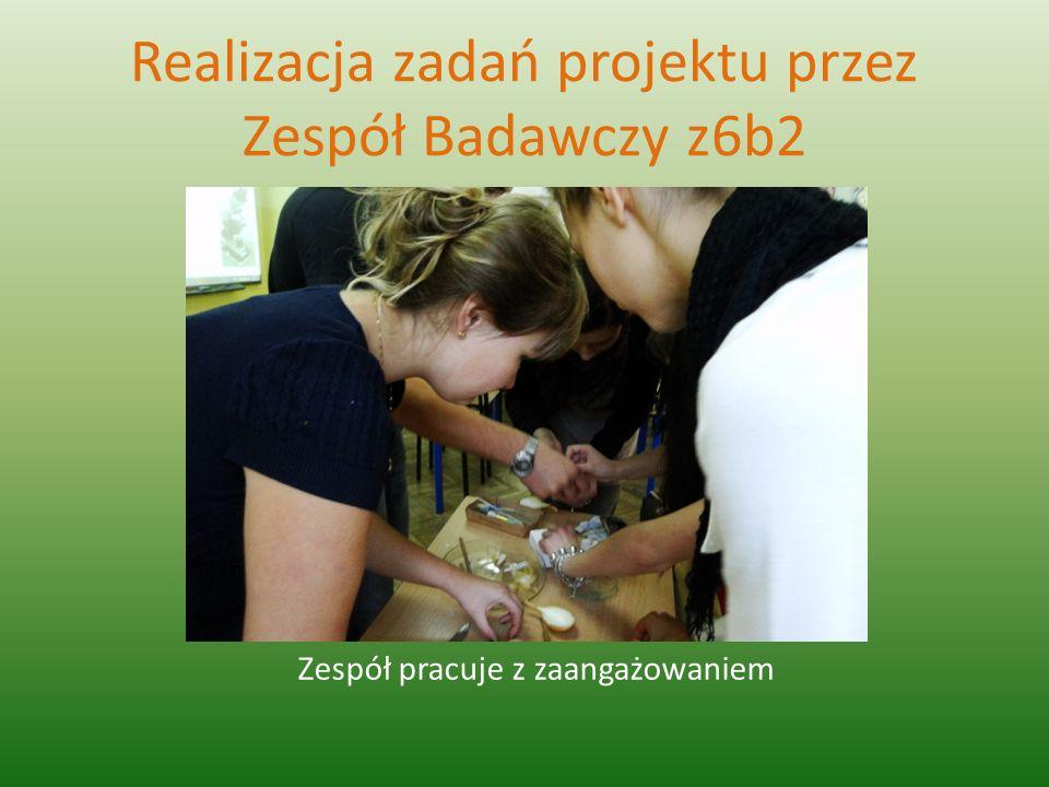Realizacja zadań projektu przez Zespół Badawczy z6b2 Zespół pracuje z zaangażowaniem
