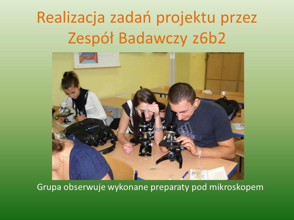 Realizacja zadań projektu przez Zespół Badawczy z6b2 Grupa obserwuje wykonane preparaty pod mikroskopem