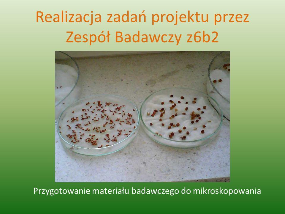 Realizacja zadań projektu przez Zespół Badawczy z6b2 Przygotowanie materiału badawczego do mikroskopowania