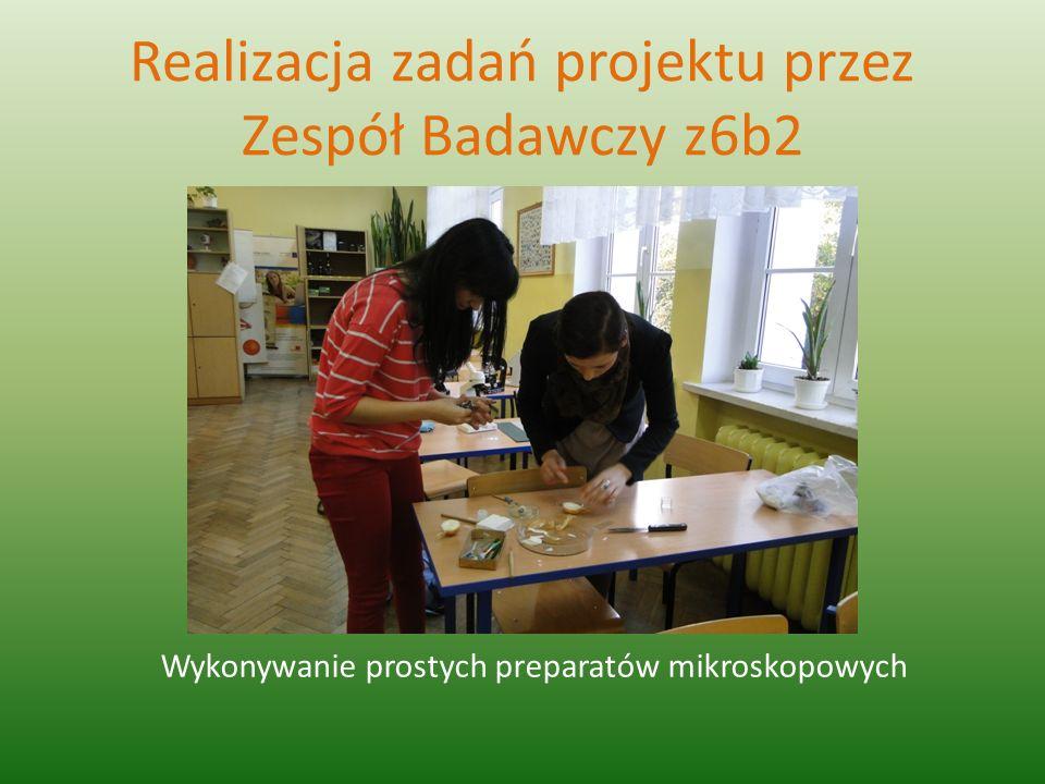 Realizacja zadań projektu przez Zespół Badawczy z6b2 Wykonywanie prostych preparatów mikroskopowych