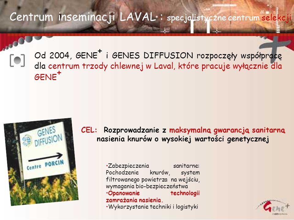 Centrum inseminacji LAVAL : specjalistyczne centrum selekcji Od 2004, GENE + i GENES DIFFUSION rozpoczęły współpracę dla centrum trzody chlewnej w Lav