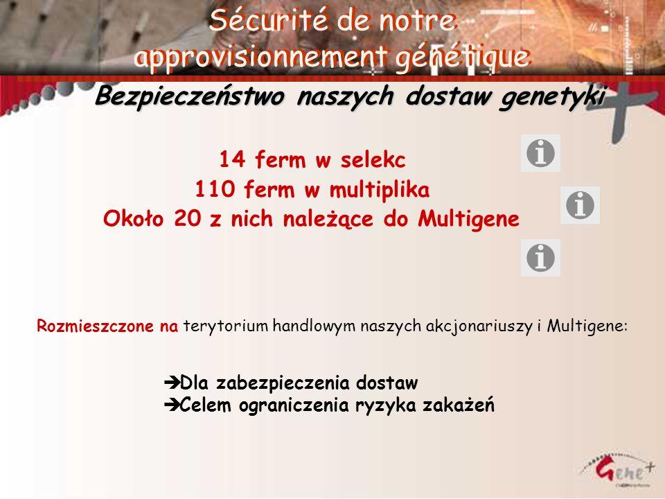 14 ferm w selekc 110 ferm w multiplika Około 20 z nich należące do Multigene Sécurité de notre approvisionnement génétique Bezpieczeństwo naszych dost