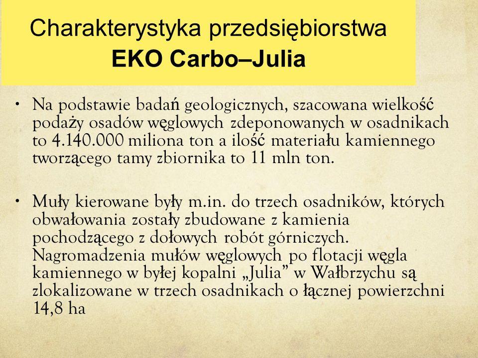 Charakterystyka przedsiębiorstwa EKO Carbo–Julia Na podstawie bada ń geologicznych, szacowana wielko ść poda ż y osadów w ę glowych zdeponowanych w os