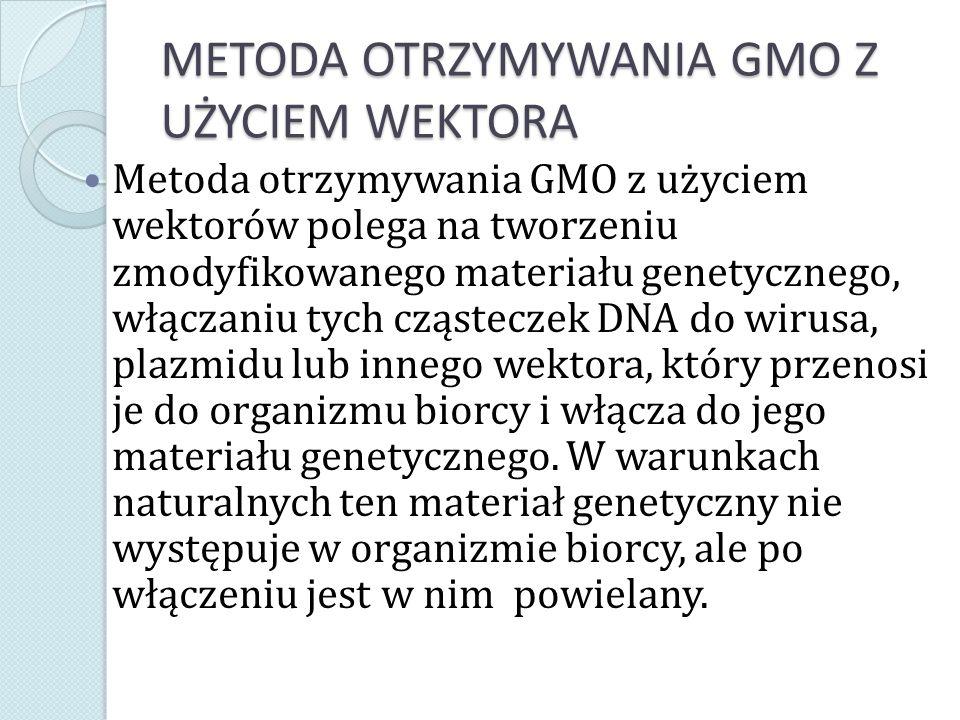 MECHANIZM WPROWADZENIA ZMODYFIKOWANEGO GENU 1) wybrany, ściśle zdefiniowany fragment DNA będący genem odpowiedzialnym za biosyntezę określonego białka, a przez to pożądanej cechy, jest wycinany z genomu dawcy za pomocą enzymów restrykcyjnych lub syntetyzowany chemicznie; 2) fragment ten jest łączony z DNA odpowiedniego wektora, czyli organizmu, który ma zdolność do przenoszenia DNA do komórek innych organizmów w sposób umożliwiający jego powielenie.