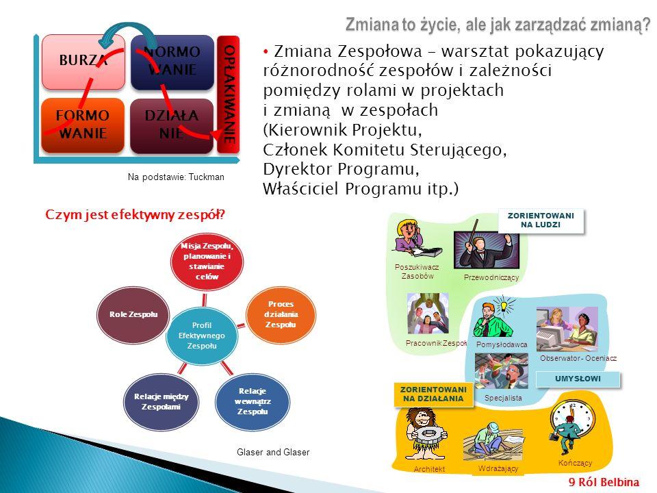 Profil Efektywnego Zespołu Misja Zespołu, planowanie i stawianie celów Proces działania Zespołu Relacje wewnątrz Zespołu Relacje między Zespołami Role