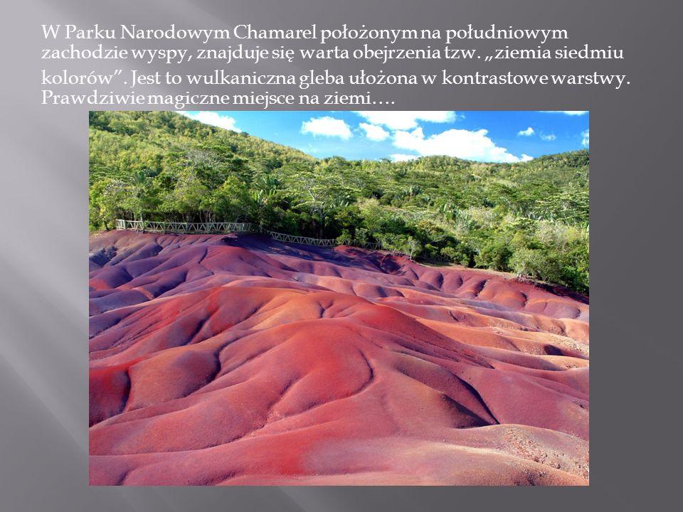 W Parku Narodowym Chamarel położonym na południowym zachodzie wyspy, znajduje się warta obejrzenia tzw. ziemia siedmiu kolorów. Jest to wulkaniczna gl