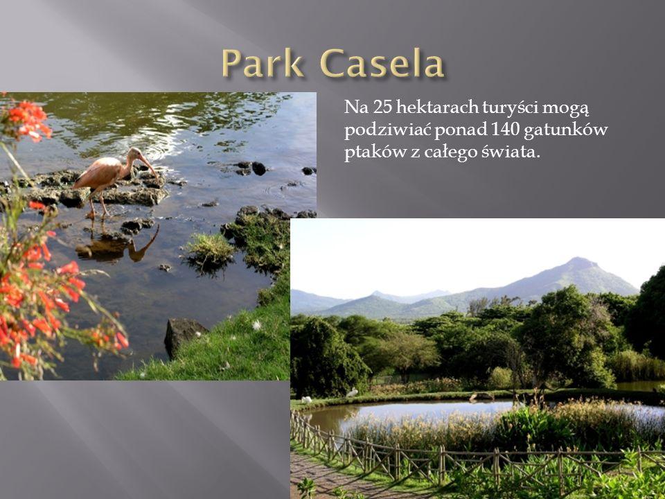 Na 25 hektarach turyści mogą podziwiać ponad 140 gatunków ptaków z całego świata.