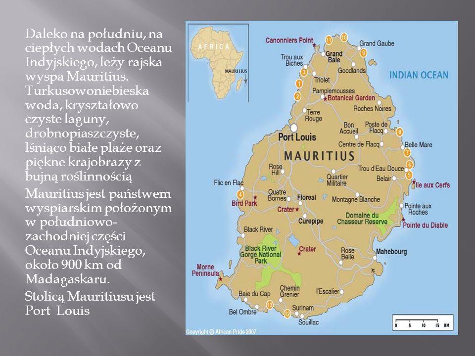 Daleko na południu, na ciepłych wodach Oceanu Indyjskiego, leży rajska wyspa Mauritius. Turkusowoniebieska woda, kryształowo czyste laguny, drobnopias
