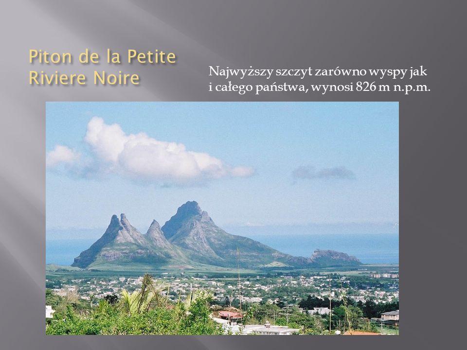 Piton de la Petite Riviere Noire Najwyższy szczyt zarówno wyspy jak i całego państwa, wynosi 826 m n.p.m.