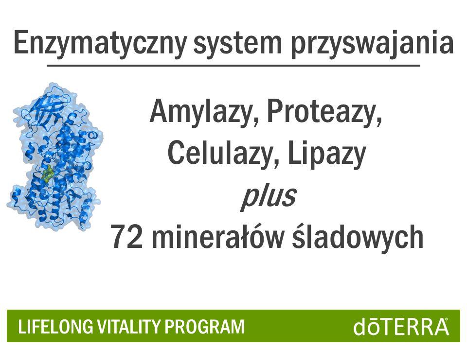 Enzymatyczny system przyswajania Amylazy, Proteazy, Celulazy, Lipazy plus 72 minerałów śladowych LIFELONG VITALITY PROGRAM