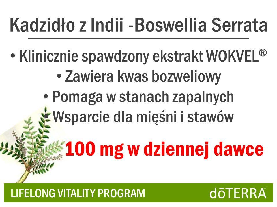 Kadzidło z Indii -Boswellia Serrata Klinicznie spawdzony ekstrakt WOKVEL ® Zawiera kwas bozweliowy Pomaga w stanach zapalnych Wsparcie dla mięśni i stawów LIFELONG VITALITY PROGRAM 100 mg w dziennej dawce