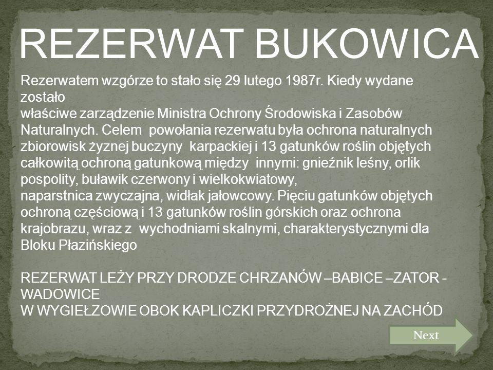 REZERWAT BUKOWICA Rezerwatem wzgórze to stało się 29 lutego 1987r.