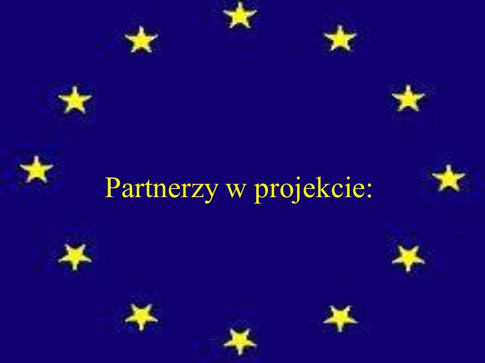 Partnerzy w projekcie: