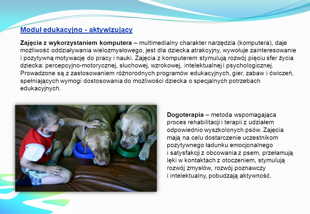 Dogoterapia – metoda wspomagająca proces rehabilitacji i terapii z udziałem odpowiednio wyszkolonych psów. Zajęcia mają na celu dostarczenie uczestnik