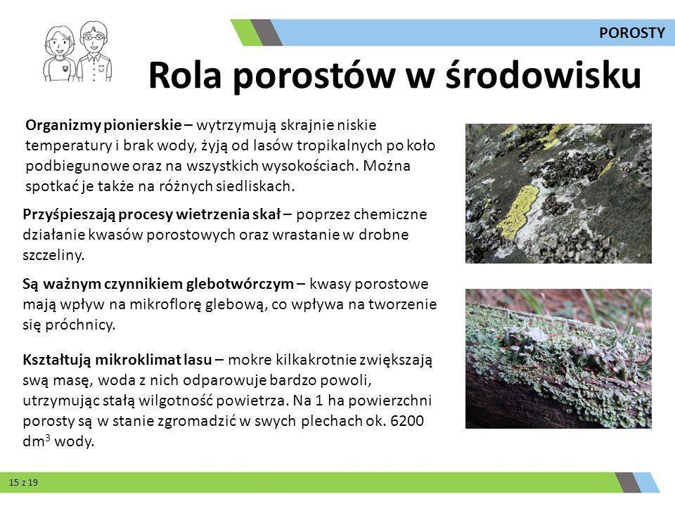 Są ważnym czynnikiem glebotwórczym – kwasy porostowe mają wpływ na mikroflorę glebową, co wpływa na tworzenie się próchnicy. Organizmy pionierskie – w