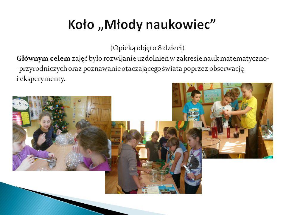 (Opieką objęto 8 dzieci) Głównym celem zajęć było kształcenie uzdolnień plastyczno-technicznych poprzez zapoznanie uczniów z różnymi technikami plastycznymi oraz rozwijanie ich aktywności twórczej.