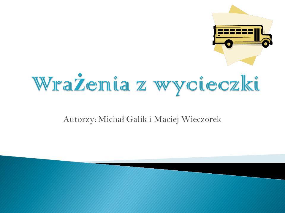 Autorzy: Micha ł Galik i Maciej Wieczorek