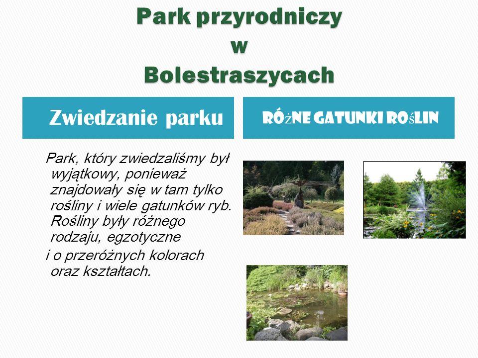 Zwiedzanie parku Ró ż ne gatunki ro ś lin Park, który zwiedzaliśmy był wyjątkowy, ponieważ znajdowały się w tam tylko rośliny i wiele gatunków ryb.