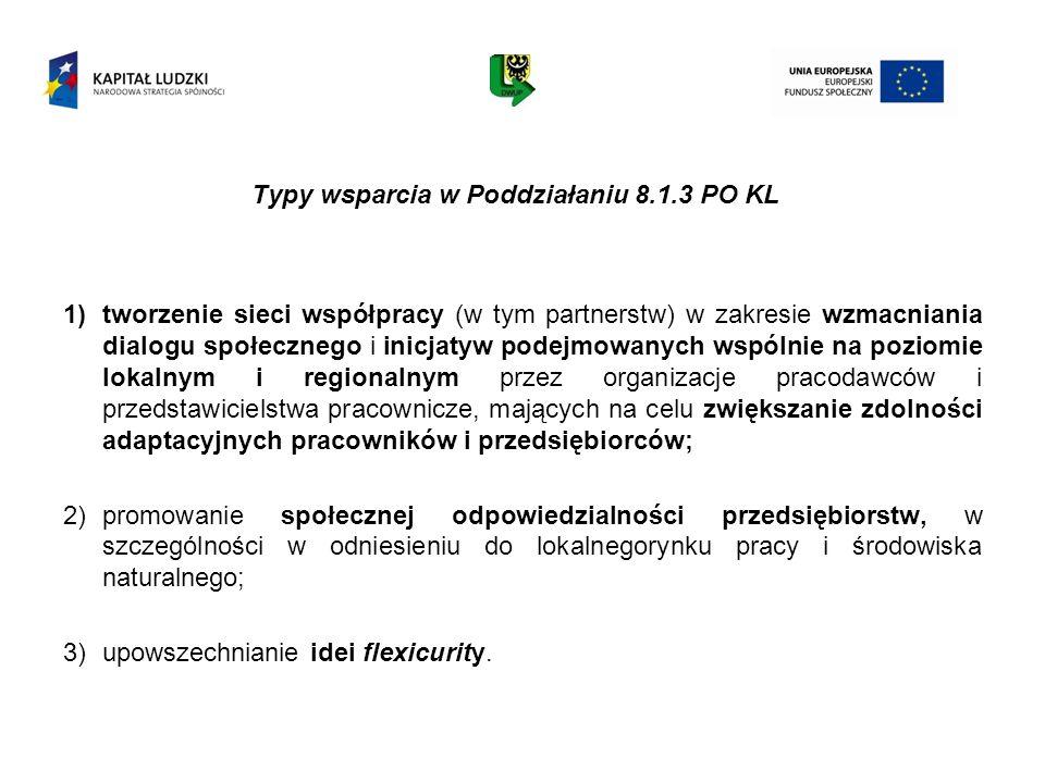Typy wsparcia w Poddziałaniu 8.1.3 PO KL 1)tworzenie sieci współpracy (w tym partnerstw) w zakresie wzmacniania dialogu społecznego i inicjatyw podejm